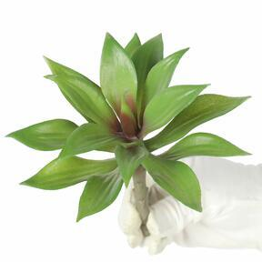 Agave Kunstpflanze 16 cm