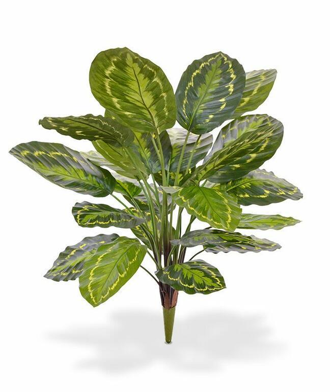 Kalatea Kunstpflanze 65 cm