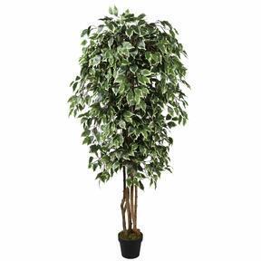 Kunstbaum Fikus Benjamin grün weiß 170 cm