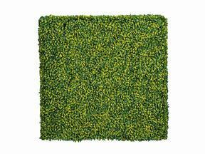 Künstliche Laubholzplatte Buxus - 50x50 cm