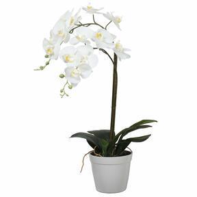 Künstliche Orchidee weiß 65 cm