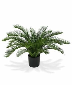 Künstliche Palme Cycas 60 cm