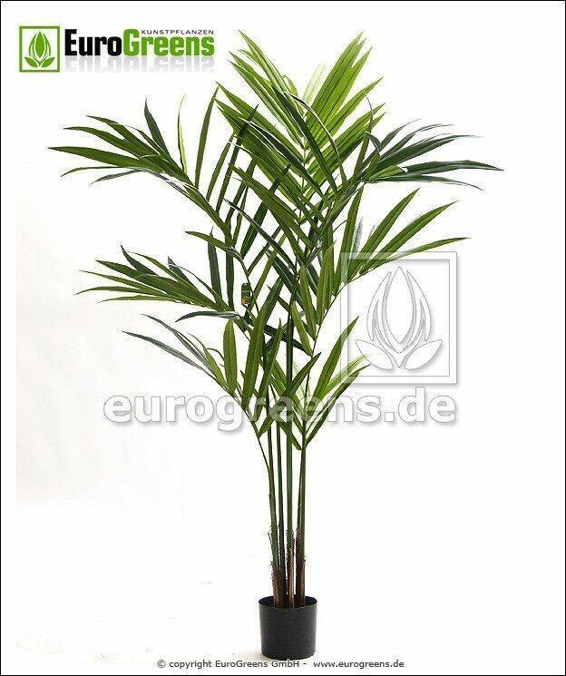 Künstliche Palme Kentia 170 cm