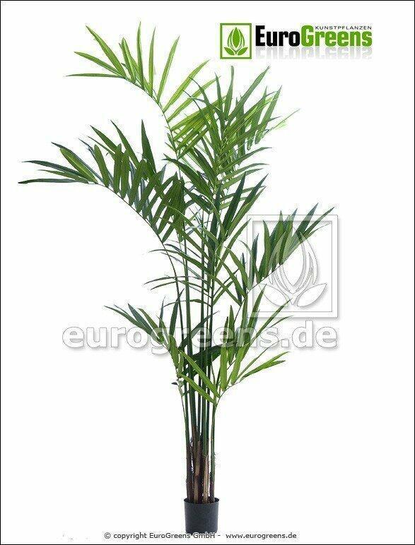 Künstliche Palme Kentia 240 cm