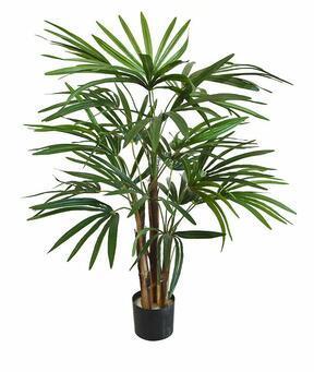Künstliche Palme Prutovnica 75 cm
