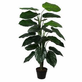 Künstliche Pflanze Fotos 120 cm