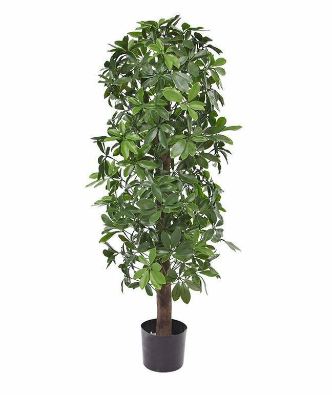 Künstliche Shefler-Pflanze 120 cm