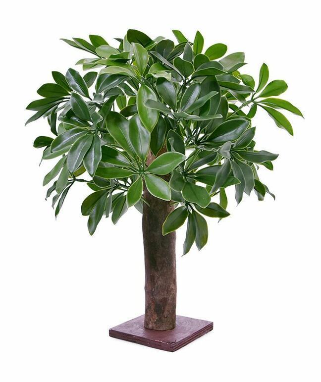 Künstliche Shefler-Pflanze 50 cm