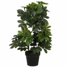 Künstliche Shefler-Pflanze 60 cm