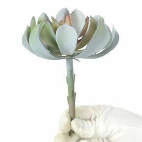 Künstlicher Lotus grau-rosa 14 cm