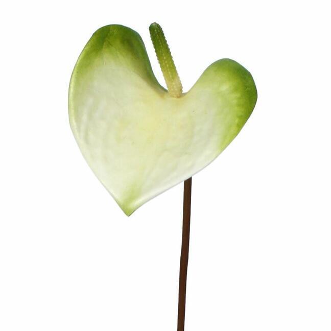 Künstlicher Zweig Anthurie grün-weiß 50 cm