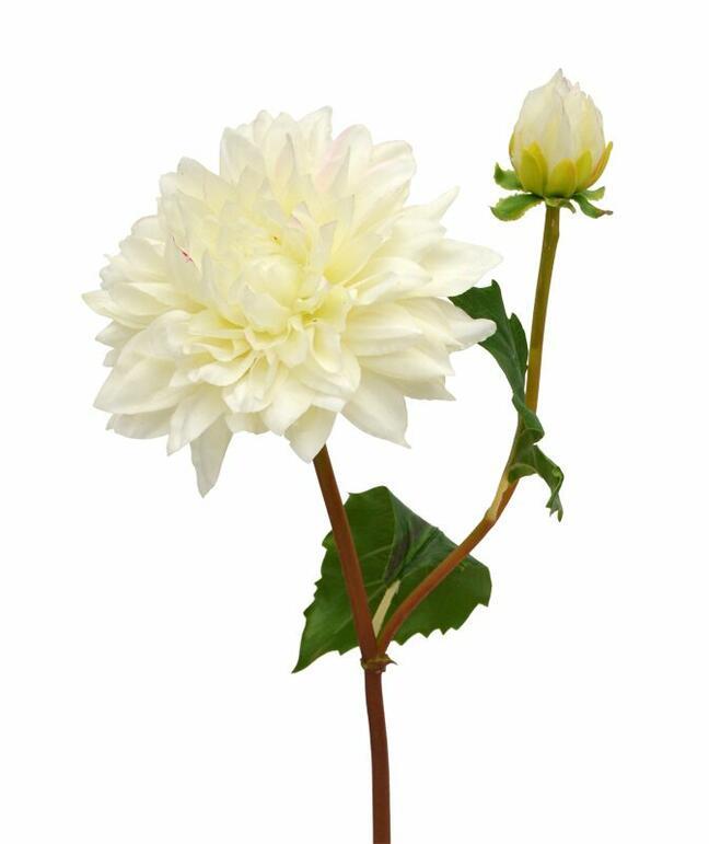 Künstlicher Zweig Dália Creme 50 cm