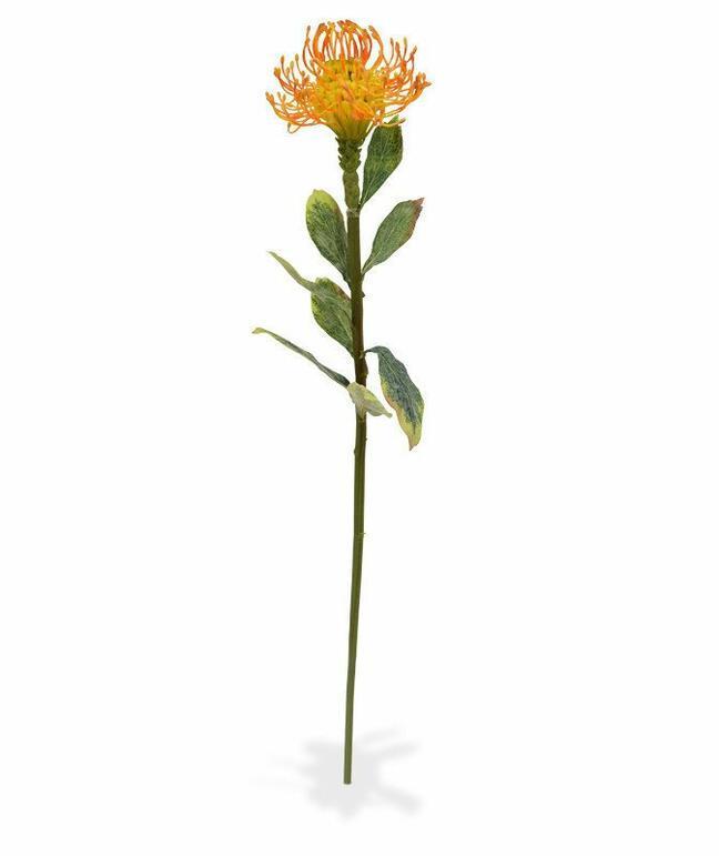 Künstlicher Zweig Leucadendron orange 60 cm