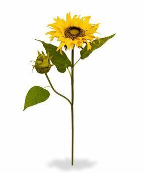 Künstlicher Zweig Sonnenblume 55 cm