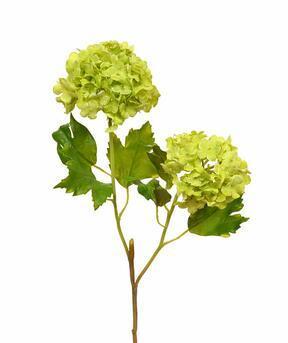 Künstlicher Zweig Viburnum gewöhnlich 55 cm