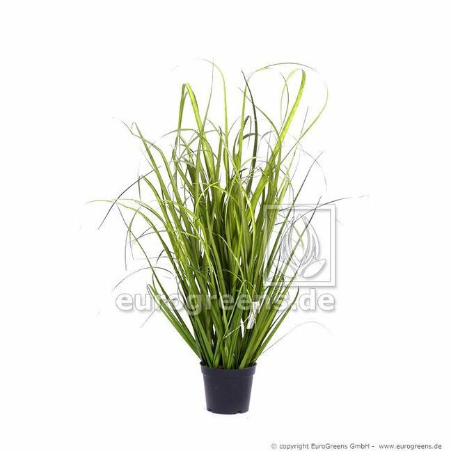 Künstliches Grasbündel Schilfrohr im Blumentopf 60 cm