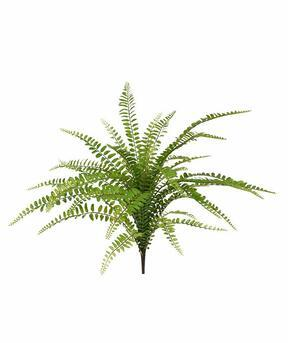 Kunstpflanze Asplenium nidus 45 cm
