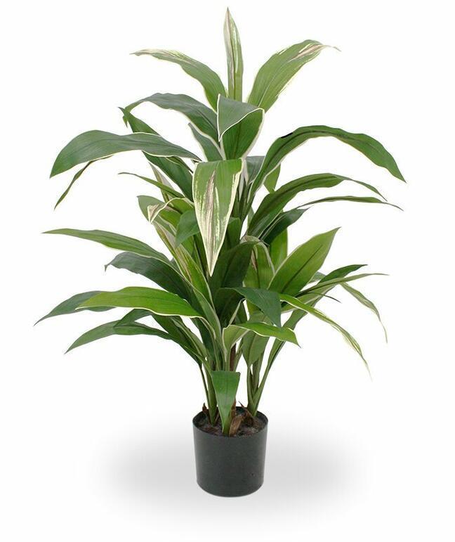 Kunstpflanze Dracena duftend 80 cm