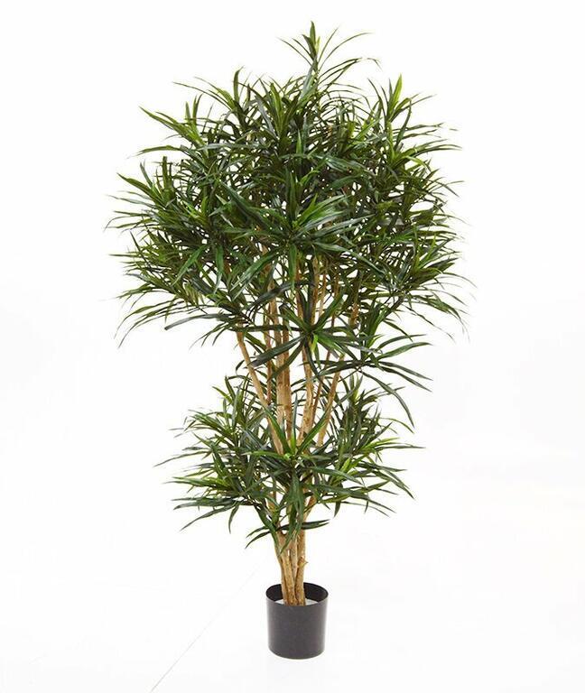 Kunstpflanze Dracena Reflex 160 cm