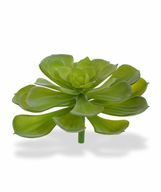 Kunstpflanze Esheveria Borste 10 cm
