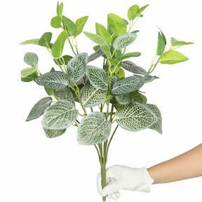 Kunstpflanze Fitónia weiß 45 cm