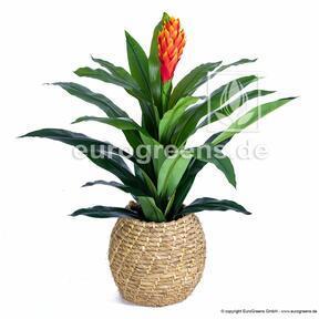 Kunstpflanze Guzmania 100 cm
