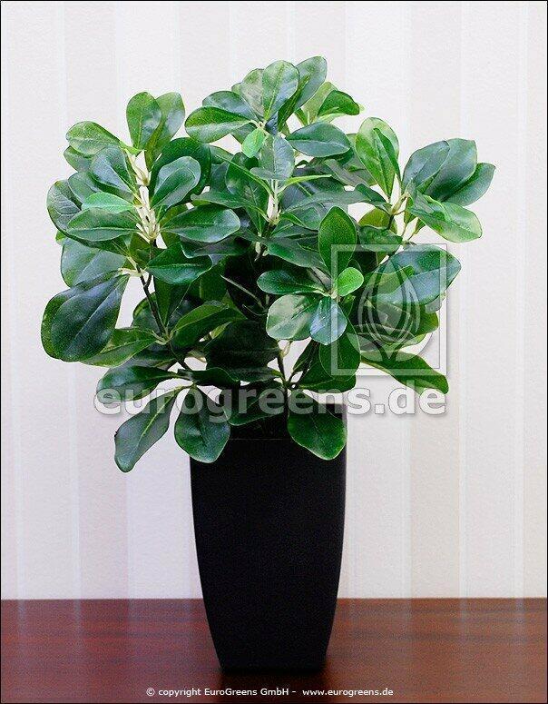 Kunstpflanze Pflaume 40 cm