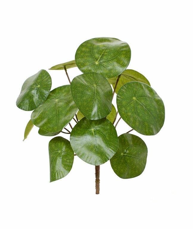 Kunstpflanze Pilea peperomioides 20 cm