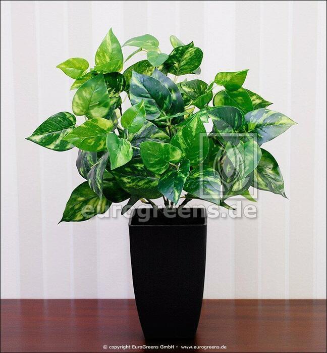 Kunstpflanze Potosovec 40 cm