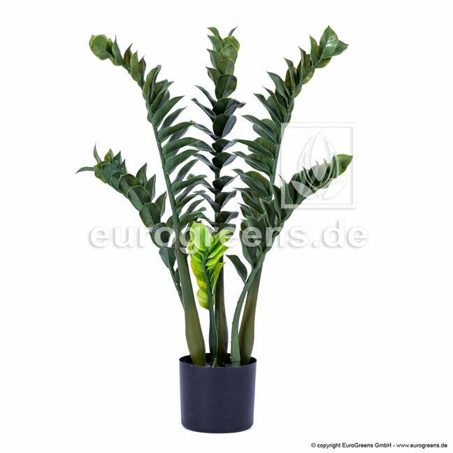 Kunstpflanze Zamiokulkas 75 cm