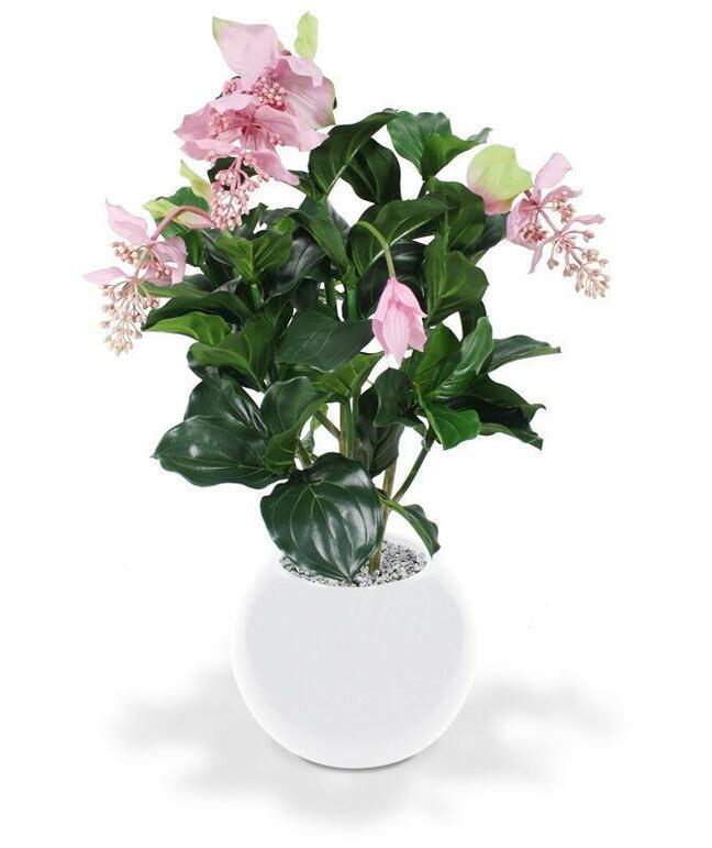Medinila Kunstpflanze schön 100 cm