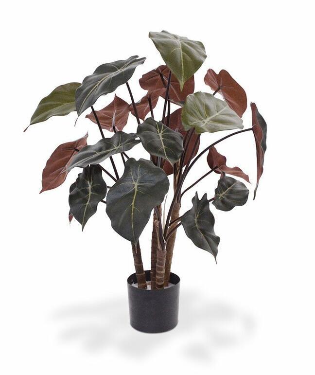 Syngonium Kunstpflanze 60 cm